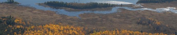 Fourth Machias Lake & peatlands