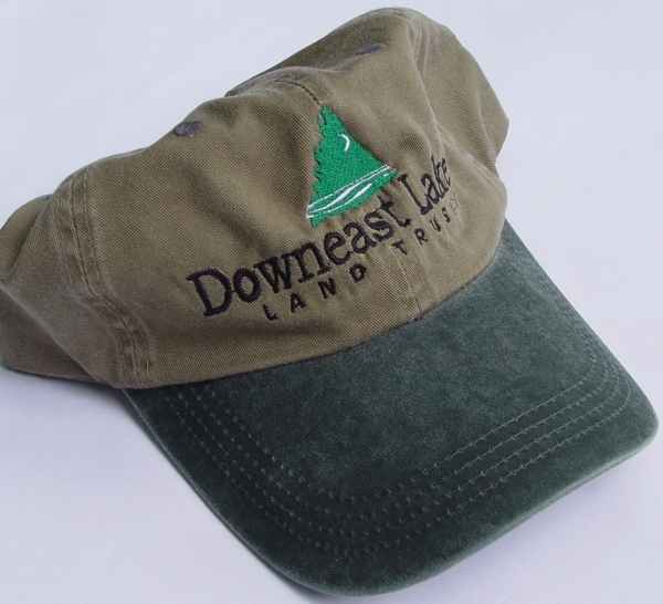 DLLT Hat