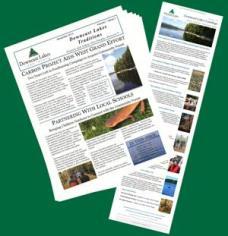 DLLT newsletters