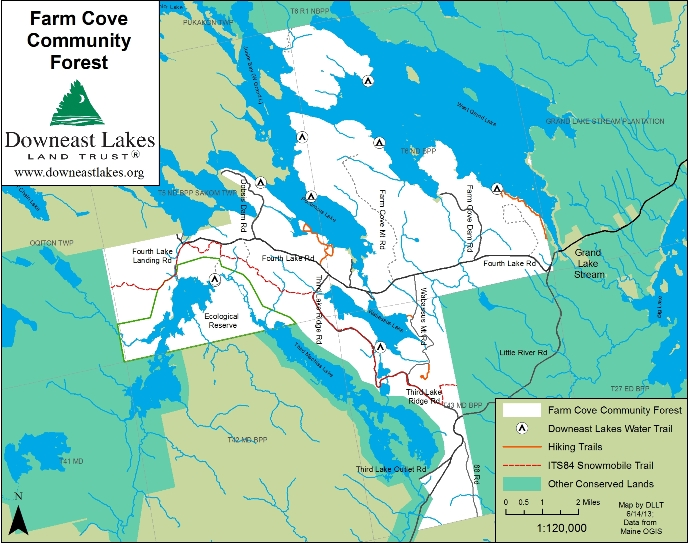 Farm Cove Community Forest Map