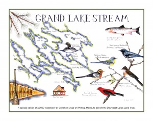 Photo of Special Edition Grand Lake Stream Print by Gretchen Mead