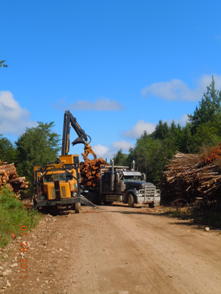 Loading logs for delivery to the mill