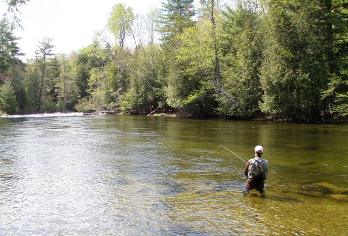 Fly-fishing, Grand Lake Stream above Big Falls
