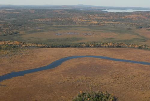 Kettle bog & Big Musquash 10.22.07 4