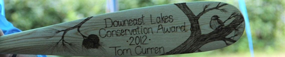 DLLT Conservation Award